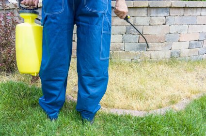 Roundup Weed Killer Lymphoma Risk